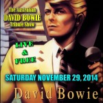DAVID BOWIE POSTER  SS&A 2911 2014 reduced